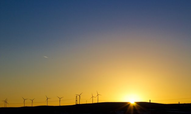 Wind power a winner for all but Queensland