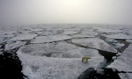 Research brief: Winter storms accelerate disintegration of sea ice in the Arctic