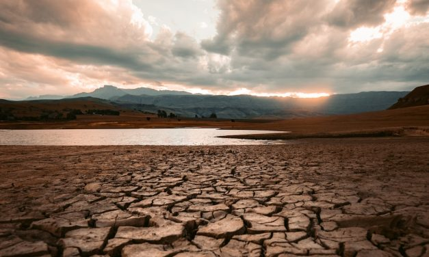 Briefing note 009: Does global warming cause droughts, drying or increased aridity?
