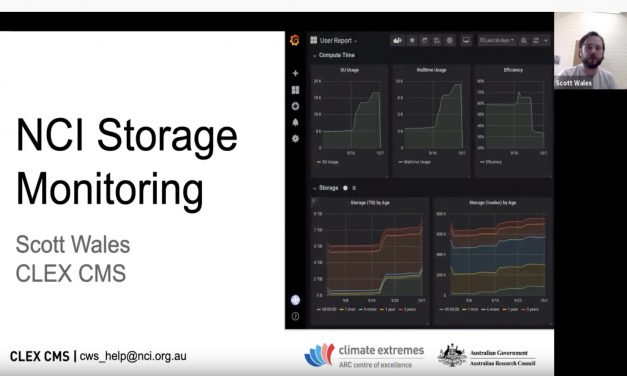 CMS talks: NCI storage monitoring