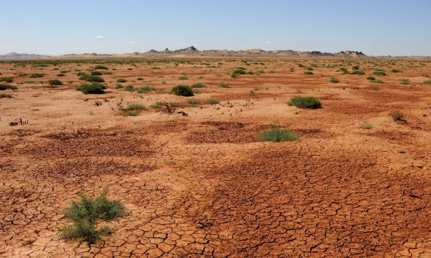 Research brief: How uncertainties in data and drought indices affect drought identification